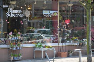 Blumen Scherrer Kaiserslautern- Blumen vom Meisterflorist